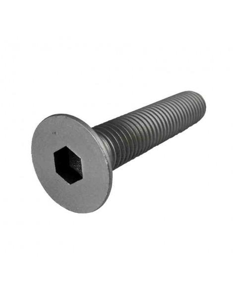 Tornillo Avellanado Allen  en Acero Inoxidable   Metrica 4      Longitud  40 mm  (10 unidades)